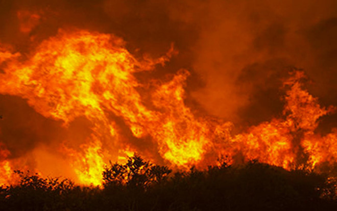 150 người dập đám cháy thiêu rụi 10 ha rừng phòng hộ
