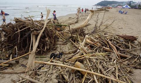 Phát hiện 2 thi thể trôi dạt vào bờ biển Thanh Hóa sau lũ