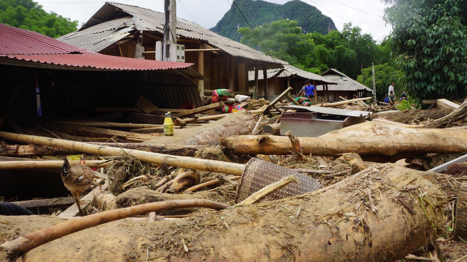 Hàng trăm m3 khối gỗ mắc kẹt tại bản làng ở Thanh Hóa sau mưa lũ