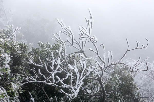 Miền Bắc lạnh 13 độ, vùng núi có thể xuất hiện băng giá