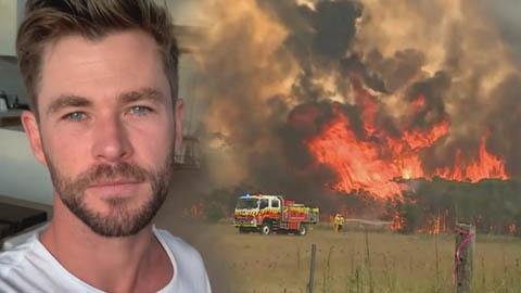 Sao quốc tế quyên góp tiền, kêu gọi hỗ trợ vụ cháy rừng ở Australia
