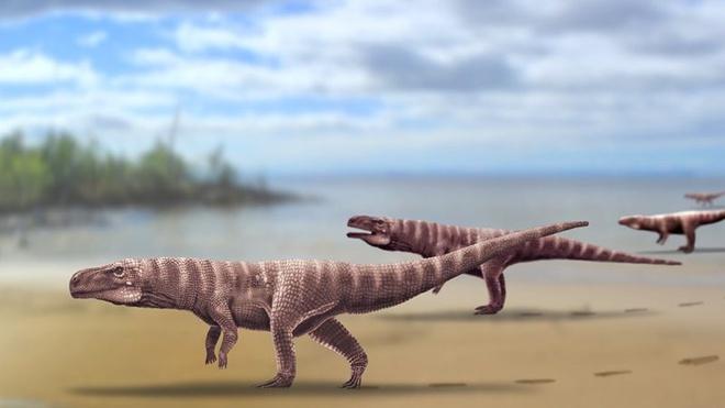 """Cá sấu cổ đại có thể từng di chuyển bằng 2 chân, """"phi"""" như đà điểu"""