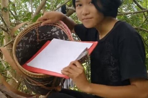 Cô gái nhận học bổng sau khi thức đêm trên cây, bắt mạng thi online