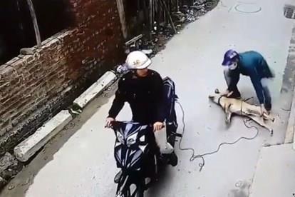 Người dân vây đánh nam thanh niên nghi trộm chó