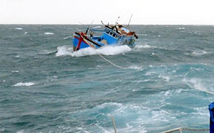 Tàu hàng đâm chìm tàu cá, 6 ngư dân thoát chết