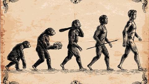 Phát hiện dấu hiệu tiến hóa của loài người