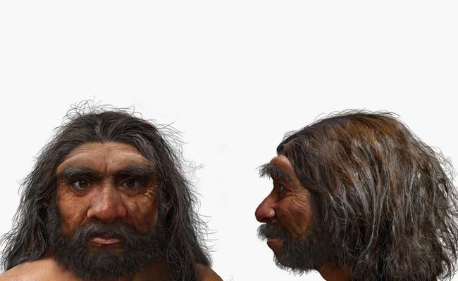 Phát hiện thêm họ hàng mới của loài người hiện đại ngoài Neanderthal